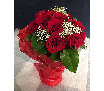 12 Red Roses in a Hand-Tied Bouquet in Markham ON, Freshland Flowers