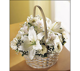 FTD Divinity Basket in Cohasset MA, ExoticFlowers.biz