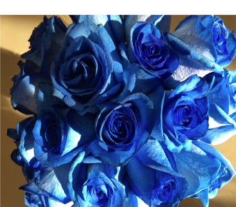 Blue Roses in Ajax ON, Reed's Florist Ltd