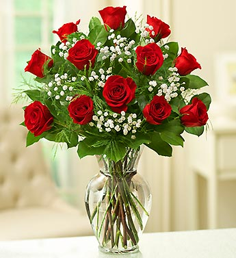 12 Red Roses with Baby's Breath in Jensen Beach FL, Brandy's Flowers & Candies