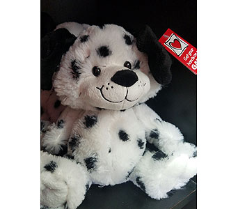Dalmation Plush Dog in Fincastle VA, Cahoon's Florist and Gifts
