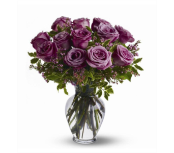 Lavender Roses 1 Dozon in Independence KY, Cathy's Florals & Gifts