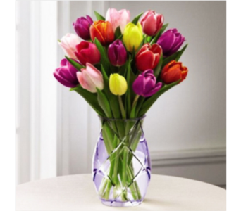 Spring Tulip Bouquet in Indianapolis IN, George Thomas Florist