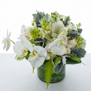 Wonderous White in New York NY, Starbright Floral Design