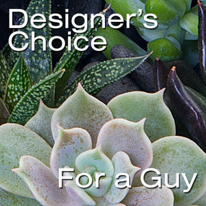 Designer's Choice-For Him in New York NY, Starbright Floral Design