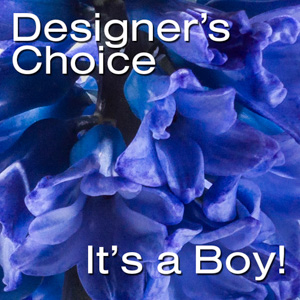 Designer's Choice-Newborn Boy in New York NY, Starbright Floral Design