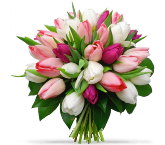 Romantic Tulip Bouquet in Etobicoke ON, Alana's Flowers & Gifts