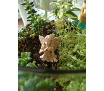Fairy Garden Blessings in Saratoga Springs NY, Dehn's Flowers & Greenhouses, Inc
