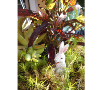 A Bunny Garden To Enjoy! in Saratoga Springs NY, Dehn's Flowers & Greenhouses, Inc