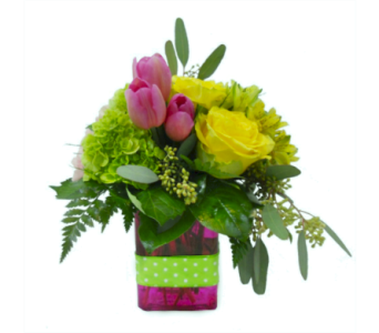 Let's Celebrate in Nashville TN, Emma's Flowers & Gifts, Inc.