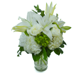 Highly Exquisite in Nashville TN, Emma's Flowers & Gifts, Inc.