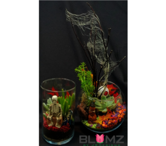 September Terrarium Class  in Ferndale MI, Blumz...by JRDesigns