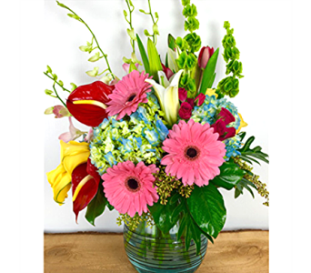 Simply Beautiful in Baltimore MD, Raimondi's Flowers & Fruit Baskets
