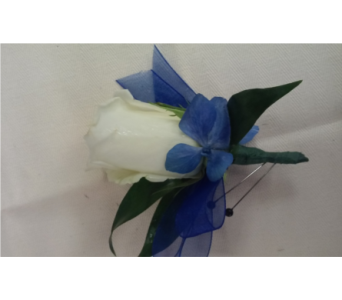 White Rose with Blue Hy in Brecksville OH, Brecksville Florist