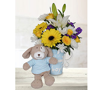 It's A Boy Mug - Deluxe with Stuffed Animal in Dallas TX, In Bloom Flowers, Gifts and More