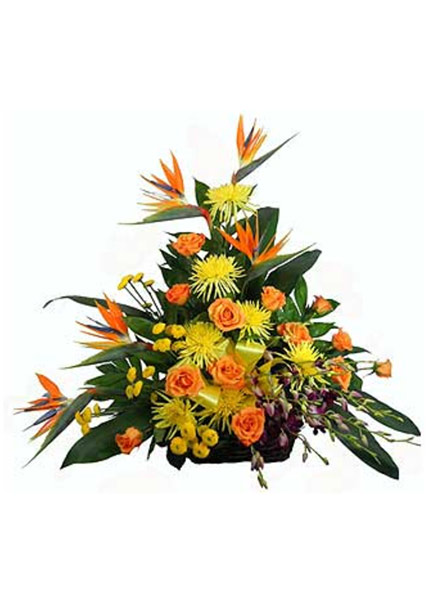 Tropical Paradise Rustic Basket in Arlington Heights IL, Sylvia's - Amlings Flowers