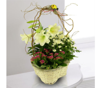 Easter Garden Basket in Indianapolis IN, George Thomas Florist