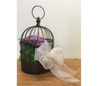 Metal Bird Cage Planter in North Bay ON, The Flower Garden