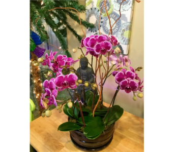 Zen Garden in Vero Beach FL, Artistic First Florist