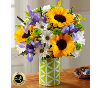 The FTD® Sunflower Sweetness™ Bouquet in Chelsea MI, Chelsea Village Flowers