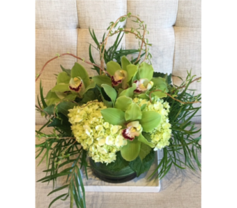 Cymbidium Garden in Charleston SC, Tiger Lily Florist Inc.