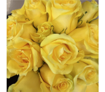 Premium Yellow Roses in Ajax ON, Reed's Florist Ltd