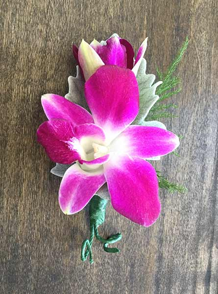 Dendrobium Orchid Boutonniere in Denver CO, Lehrer's Flowers