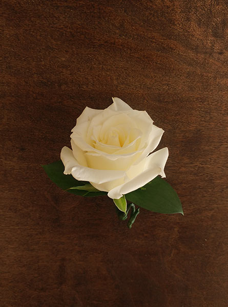 White Roses Boutonniere in Arlington Heights IL, Sylvia's - Amlings Flowers