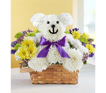 Beary Cheerful in Huntington WV, Archer's Flowers, Inc.