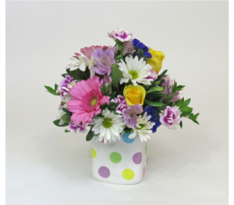 Pastel Polka Dots in Royersford PA, Three Peas In A Pod Florist