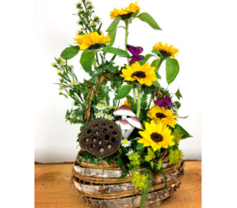 Sunflower Birch Basket in Baltimore MD, Raimondi's Flowers & Fruit Baskets