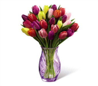 Spring Tulip Bouquet in Norristown PA, Plaza Flowers