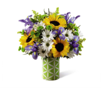 Sunflower Sweetness Bouquet in Norristown PA, Plaza Flowers
