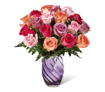 Make Today Shine Rose Bouquet in Norristown PA, Plaza Flowers