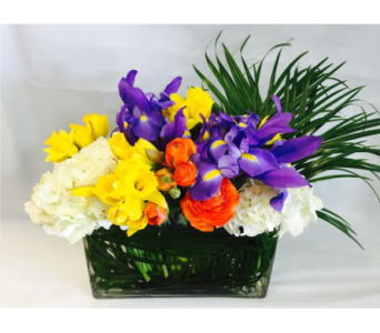 Spring Daffodil Arrangement in West Los Angeles CA, Sharon Flower Design