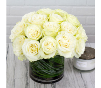 Chic White Roses in Markham ON, Freshland Flowers