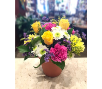Spring Sonata in Princeton, Plainsboro, & Trenton NJ, Monday Morning Flower and Balloon Co.
