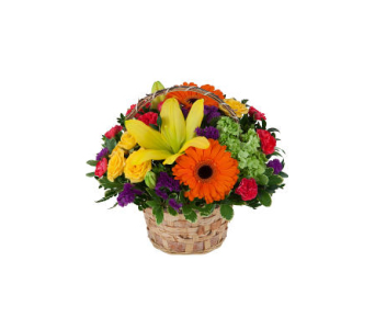 Bold and Beautiful Basket in Markham ON, Freshland Flowers