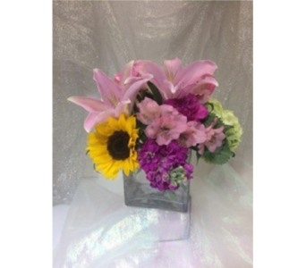 Shades of Pink Cube in Manhasset NY, Town & Country Flowers