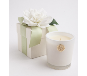 Cape Jasmine Candle in Little Rock AR, Tipton & Hurst, Inc.