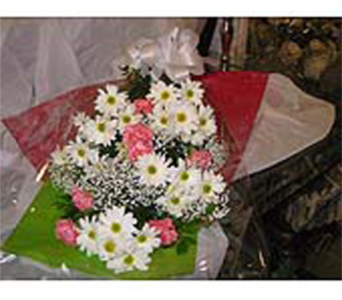 Daisy Delight Bouquet in Markham ON, Freshland Flowers