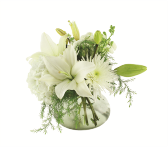 Fresh and Fragrant in Oviedo FL, Oviedo Florist
