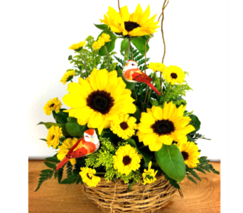 Sunflowers by Karen in Baltimore MD, Raimondi's Flowers & Fruit Baskets