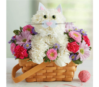 Fabulous Feline in Pittsburgh PA, Eiseltown Flowers & Gifts