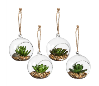 Artificial Succulent In Glass Globe in Ajax ON, Reed's Florist Ltd
