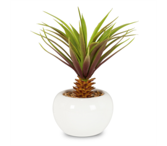 Artificial Leafy Palm in Pot in Ajax ON, Reed's Florist Ltd