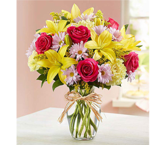 Fields of Europe� for Mom in Watertown CT, Agnew Florist