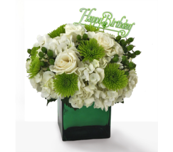 May Birthday Arrangement of the Month-Emerald in Southfield MI, Thrifty Florist