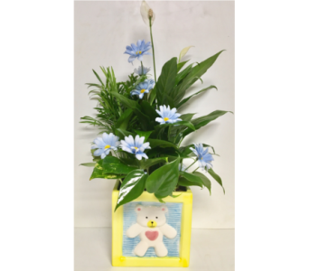 Large Ceramic Baby Block Planter w/Blue- 6x6 Block in Wyoming MI, Wyoming Stuyvesant Floral