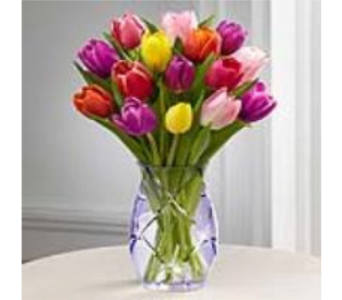 Spring Tulip Bouquet in New York NY, CitiFloral Inc.